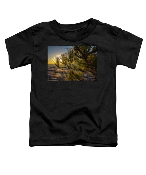 Sunset Pines Toddler T-Shirt