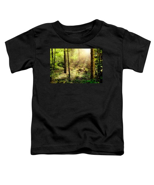 Sunshine From Above Toddler T-Shirt