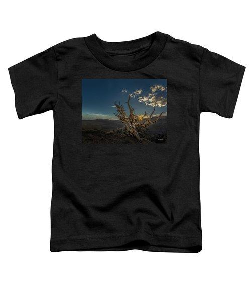 Survivor Toddler T-Shirt