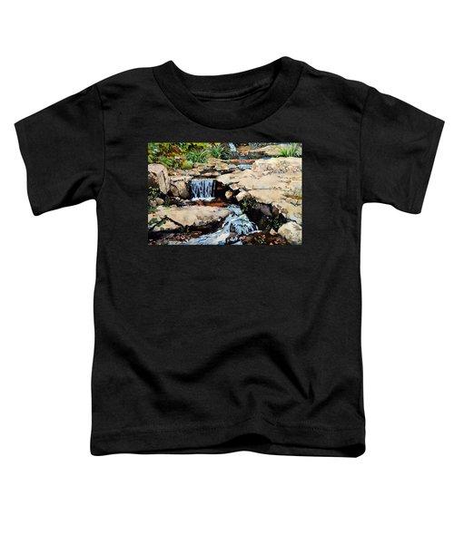 Susquehanna Falls Toddler T-Shirt