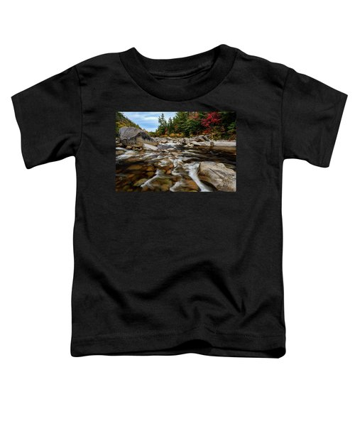 Swift River Autumn Nh Toddler T-Shirt