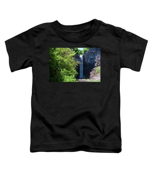Taughannock Falls 0466 Toddler T-Shirt