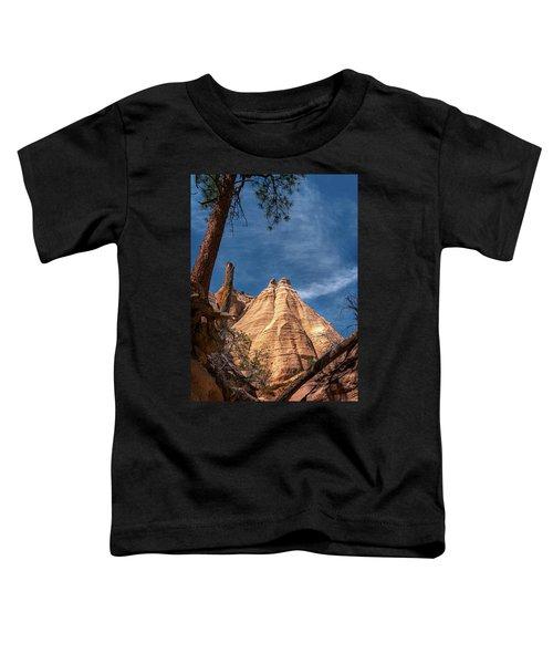 Tent Rock And Ponderosa Pine Toddler T-Shirt