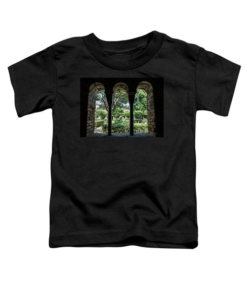 The Ancient Cloister Toddler T-Shirt