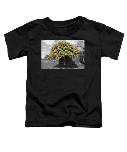 The Big Hydrangea Tree Toddler T-Shirt
