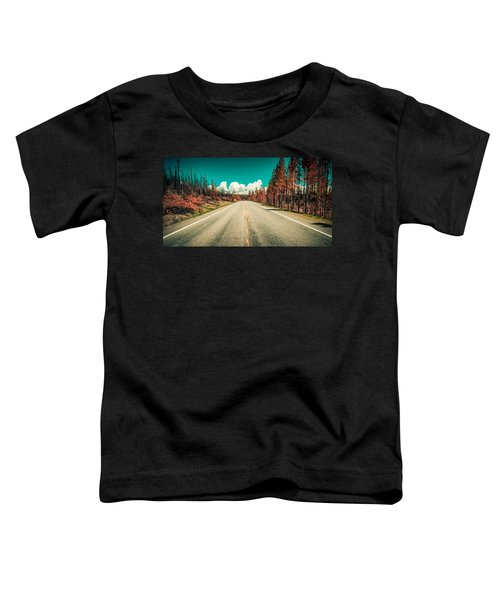The Dried County Toddler T-Shirt