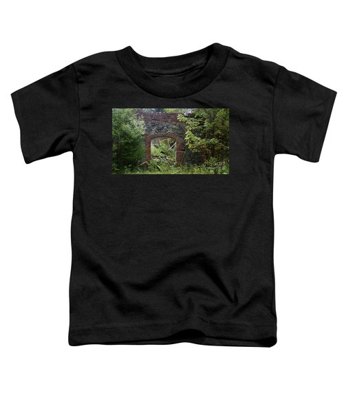 The Gate Into Nothingness Toddler T-Shirt