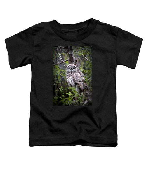The Great Gray Toddler T-Shirt