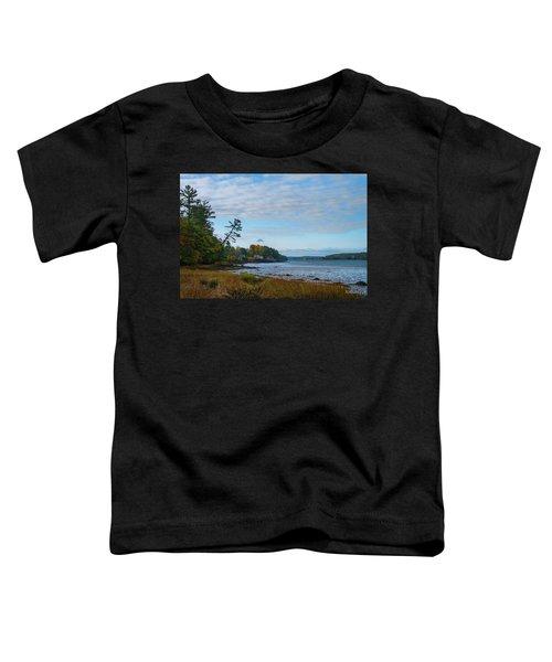 The Maine Coast Near Edgecomb  Toddler T-Shirt