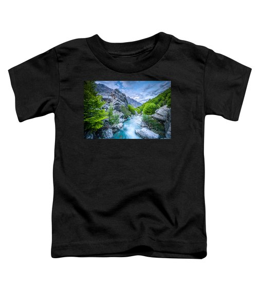 The Mountain Spring Toddler T-Shirt