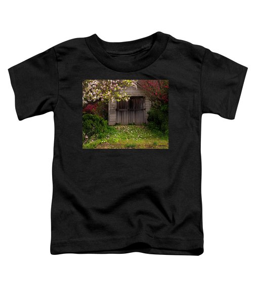 The Old Barn Toddler T-Shirt