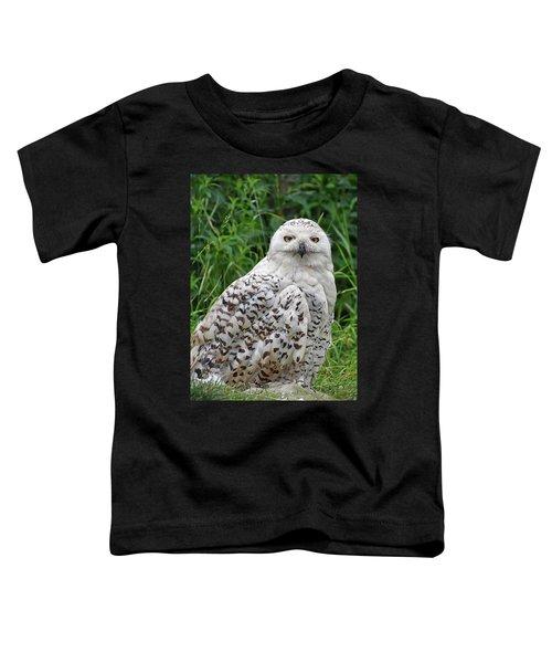 The Professor Toddler T-Shirt