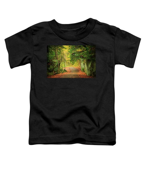 The Road To The Mill  Toddler T-Shirt
