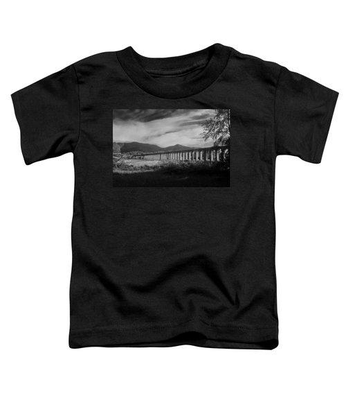 The Roman Aqueducts Toddler T-Shirt