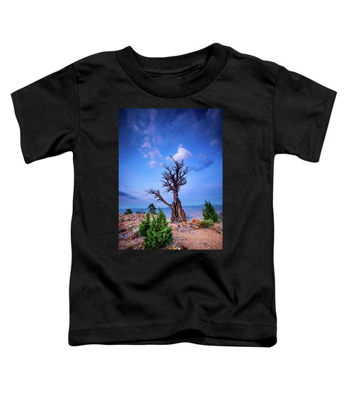 The Sentinel Still Stands Toddler T-Shirt