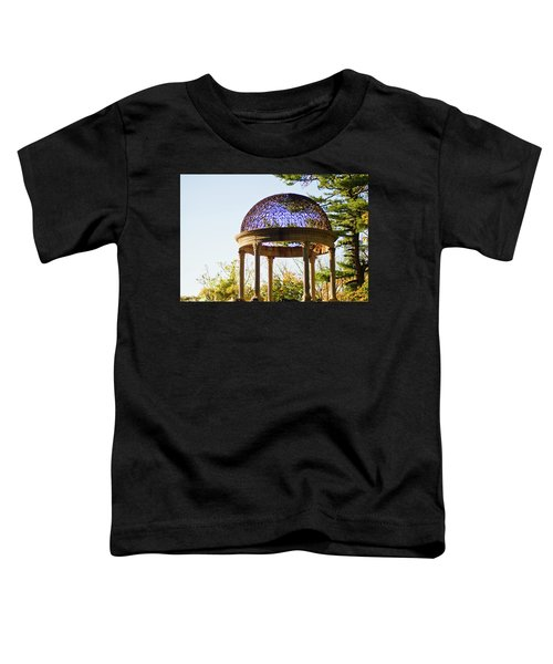 The Sunny Dome  Toddler T-Shirt