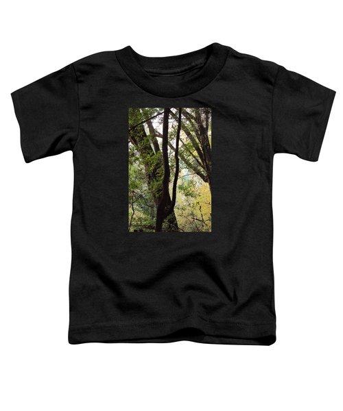 Through The Trees Toddler T-Shirt