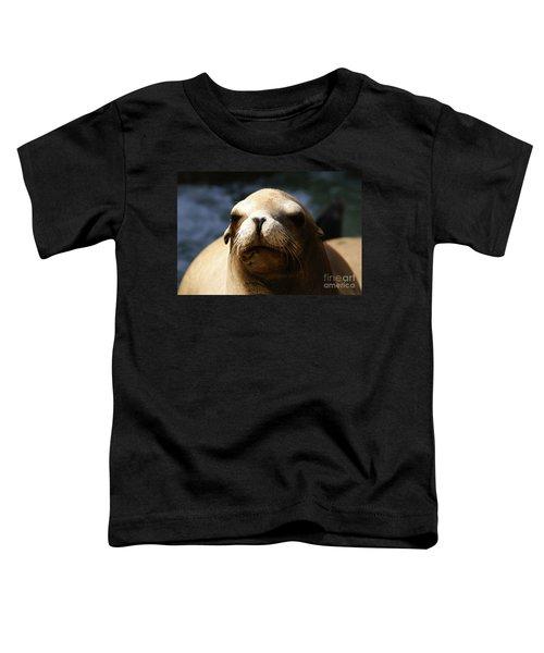 To Bask In Royal Sun Toddler T-Shirt