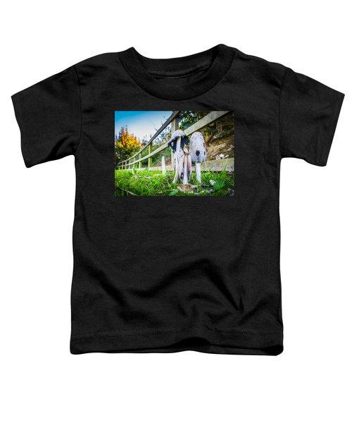 Toadstools. Toddler T-Shirt