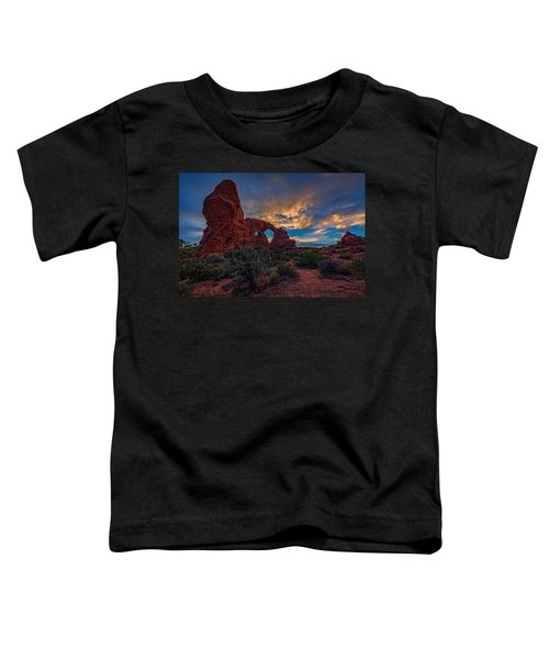 Turret Arch Toddler T-Shirt