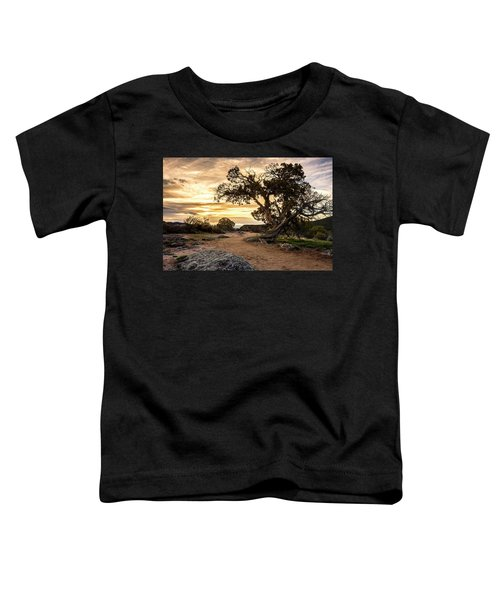 Twisted Sunset Toddler T-Shirt
