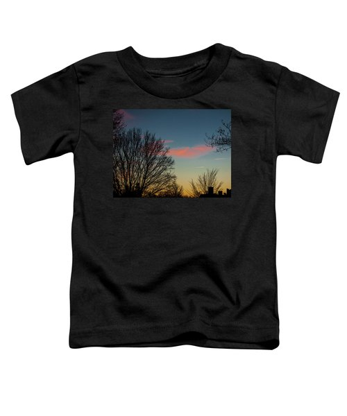 Two Planes Toddler T-Shirt