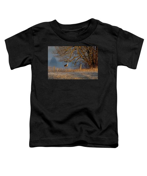Up And Over Toddler T-Shirt