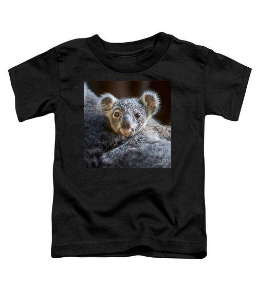 Up Close Koala Joey Toddler T-Shirt by Jamie Pham