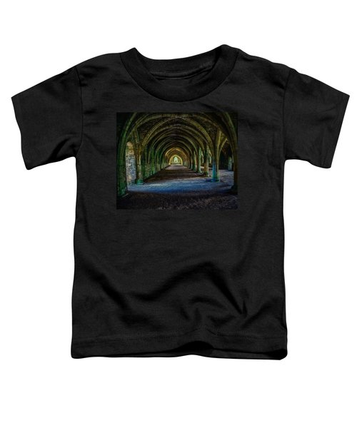Vaulted, Fountains Abbey, Yorkshire, United Kingdom Toddler T-Shirt