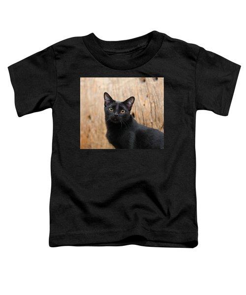 Velvet 2 Toddler T-Shirt
