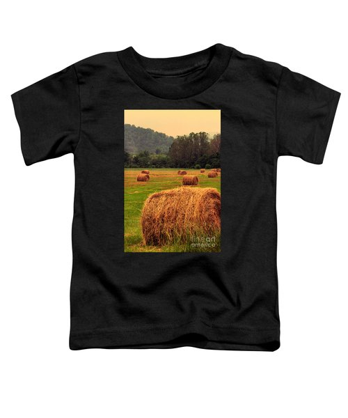 Virginia Evening Toddler T-Shirt