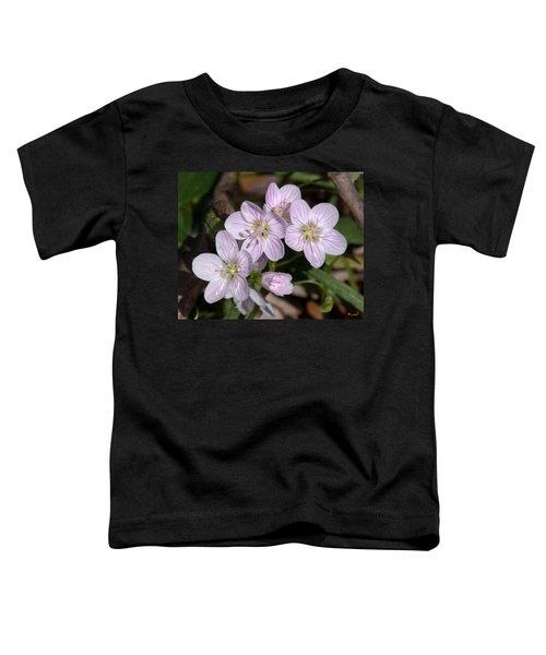 Virginia Or Narrowleaf Spring-beauty Dspf041 Toddler T-Shirt