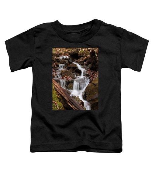 Walden Creek Cascade Toddler T-Shirt