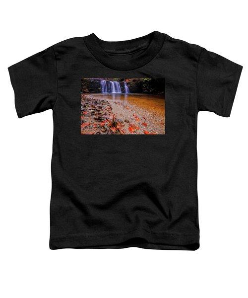 Waterfall-8 Toddler T-Shirt