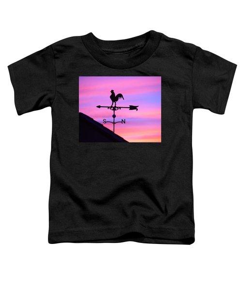 Weather Vane, Wendel's Cock Toddler T-Shirt