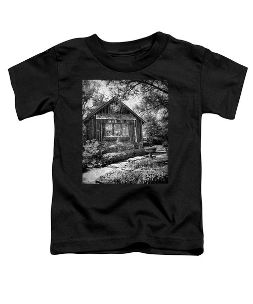 Weathered With Time Toddler T-Shirt