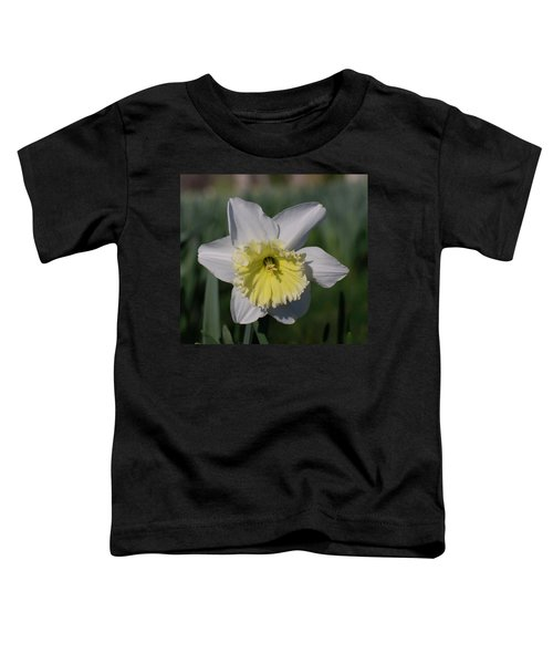 White And Yellow Daffodil Toddler T-Shirt