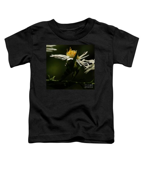 White Aster Toddler T-Shirt