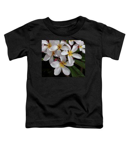 White/yellow Plumerias In Bloom Toddler T-Shirt