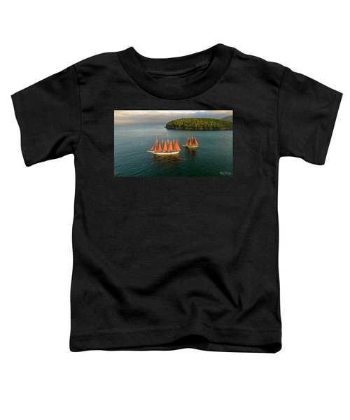 Windjammer Cruises  Toddler T-Shirt