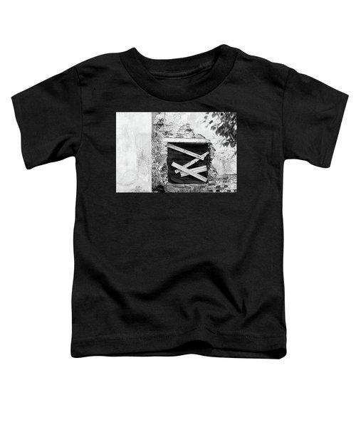 Window #2895 Toddler T-Shirt