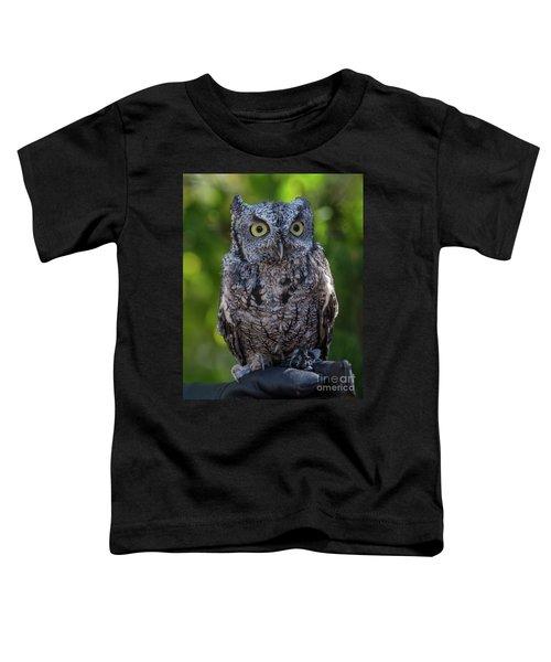 Winston Wildlife Art By Kaylyn Franks Toddler T-Shirt
