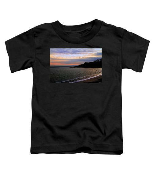 Winter's Beachcombing Toddler T-Shirt