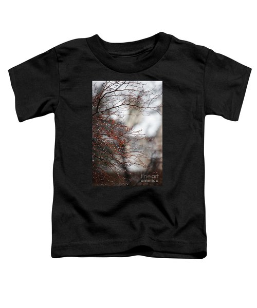 Wintry Mix Toddler T-Shirt