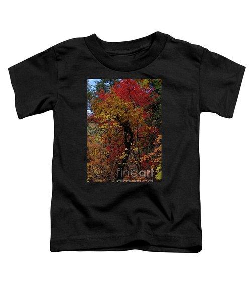 Woods In Oak Creek Canyon, Arizona Toddler T-Shirt