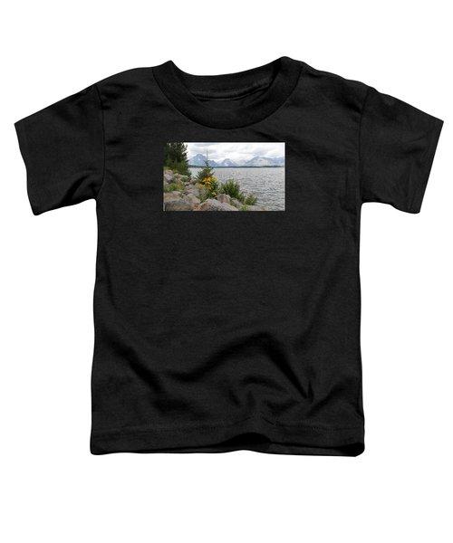 Wyoming Mountains Toddler T-Shirt