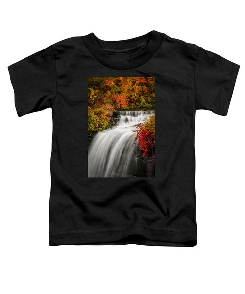 Fall At Minnehaha Falls Toddler T-Shirt