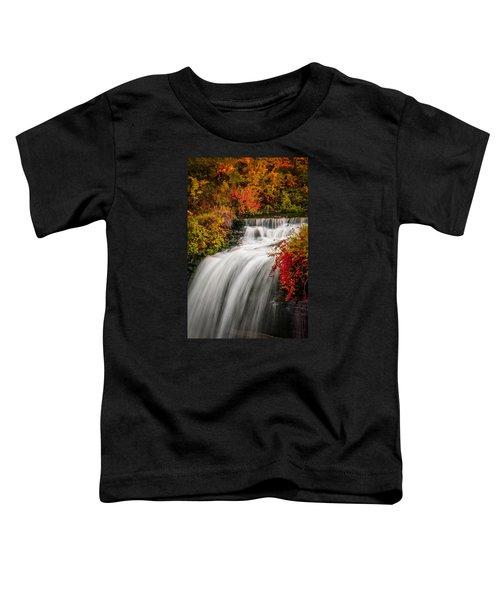 Fall At Minnehaha Falls Toddler T-Shirt