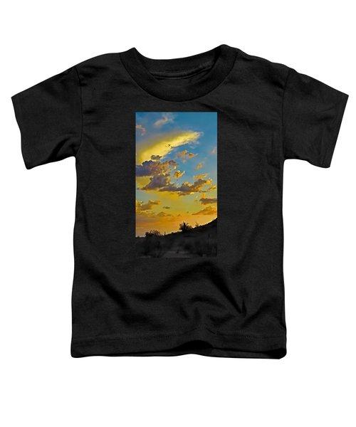 Y Cactus Sunset 10 Toddler T-Shirt