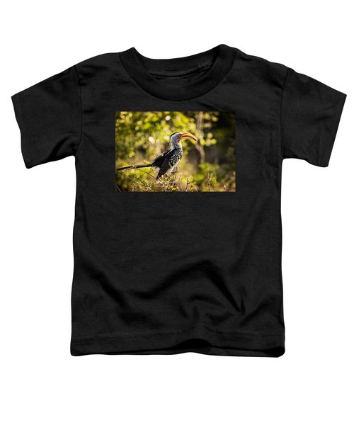 Yellow-billed Hornbill Toddler T-Shirt